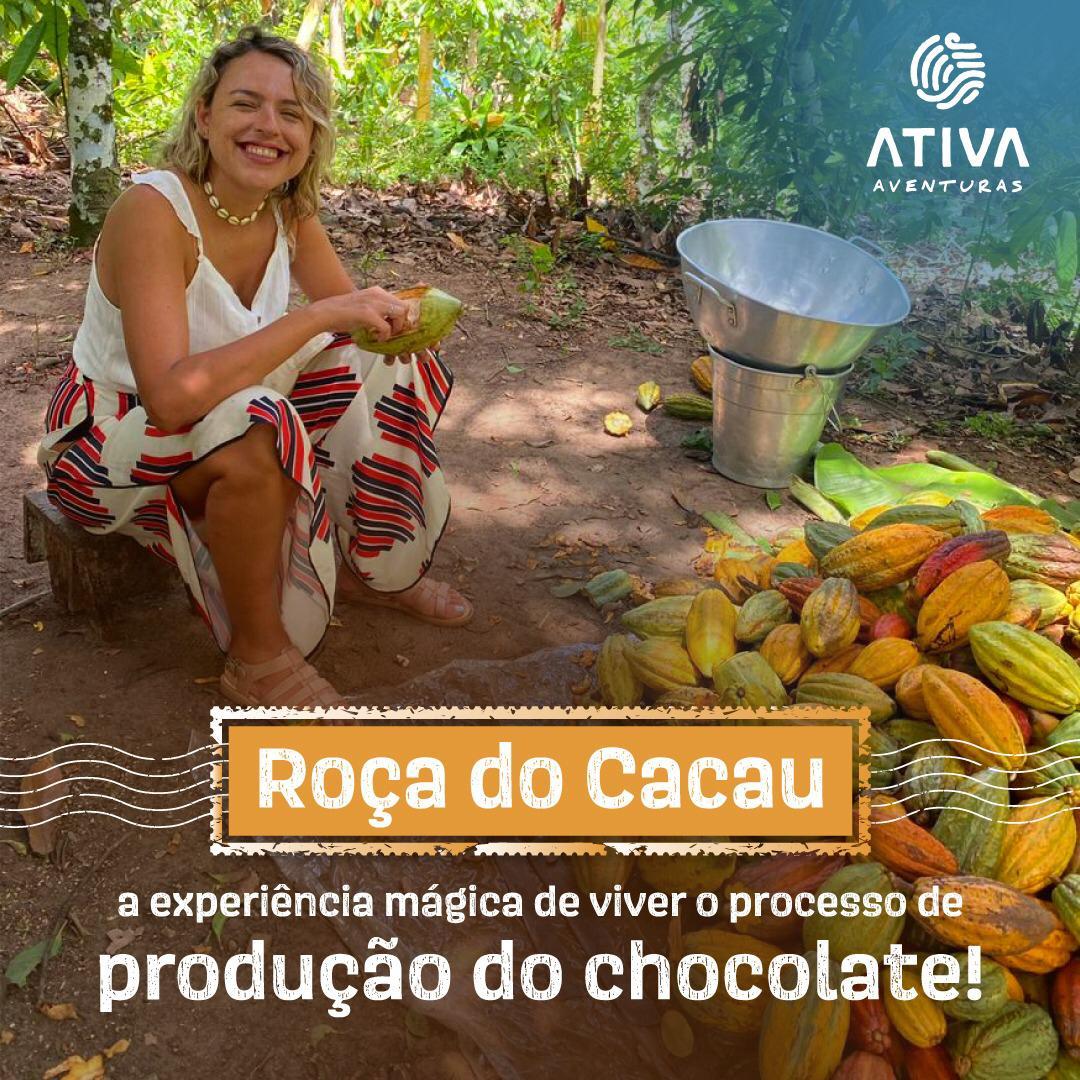 Roça do Cacau: participe desta experiência mágica de viver todo o processo da produção do chocolate!